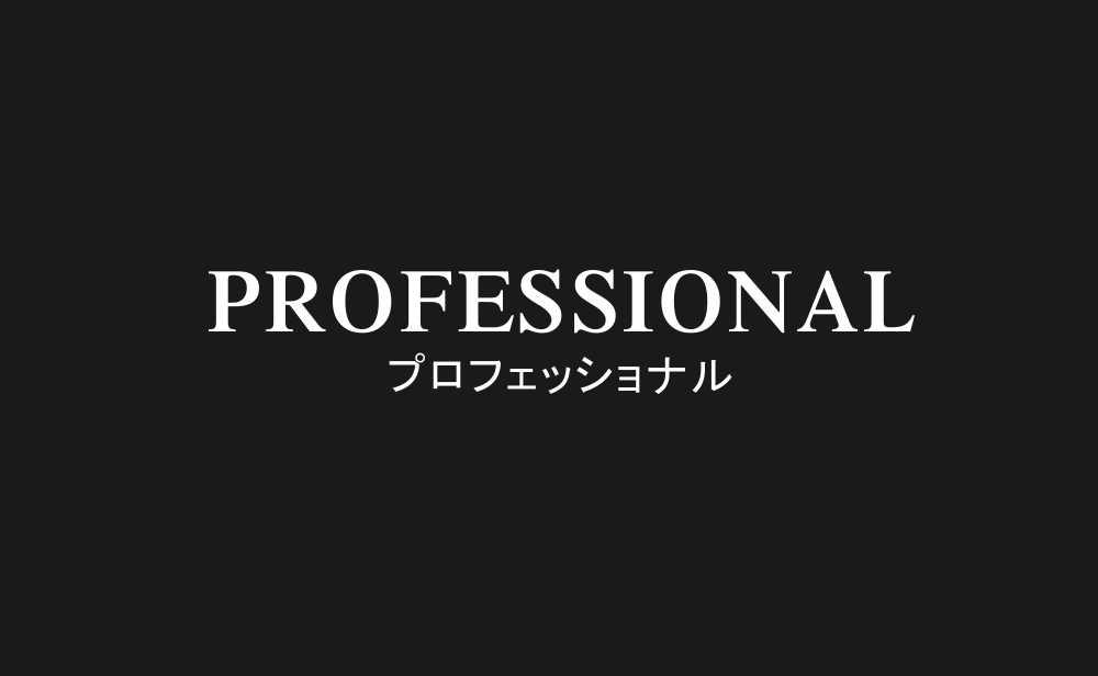 プロフェッショナル